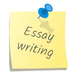 College essay guy UK essays